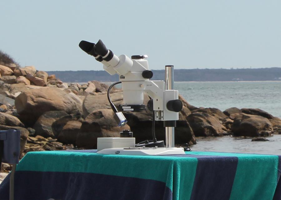 dark tent 6 meyer instruments Olympus BH-2 Microscope Manual Olympus Phase Microscope with Manual